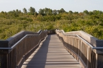Weedon Island boardwalk